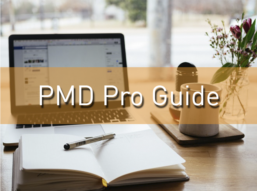 Project Management For Development Professionals Guide Pm4ngos
