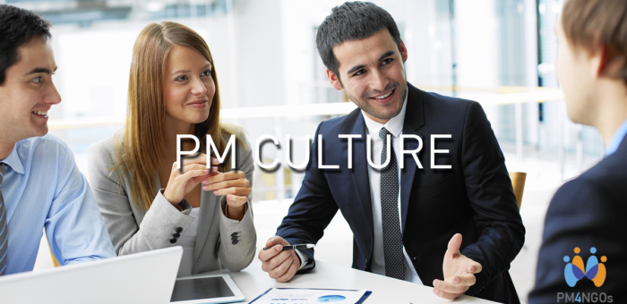 Project Management Culture: Necessity or Nuisance?