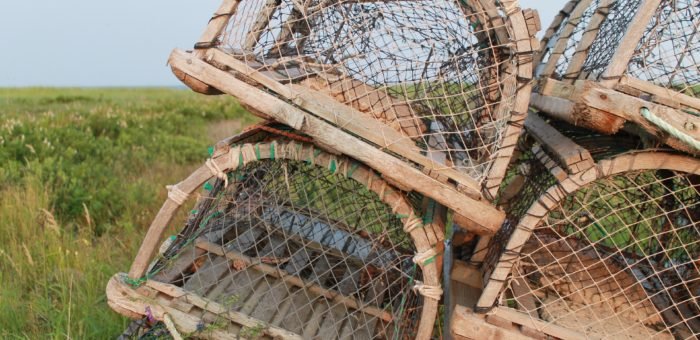 Four traps that can lead to project failure
